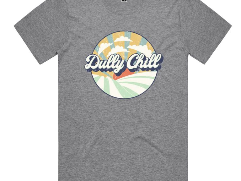 Thumbnail for Dully Chill Adults T-Shirt Grey